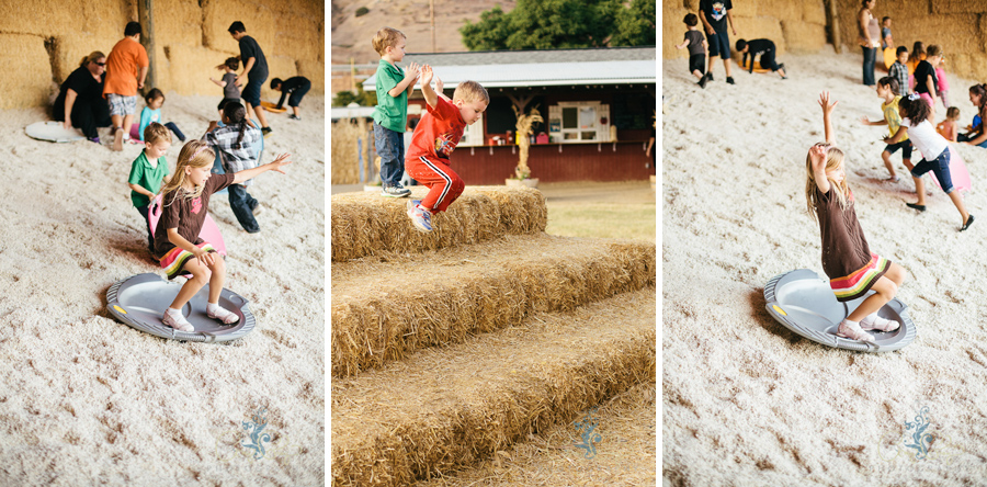 Oma's Pumpkin Patch | Cottonseed Slide