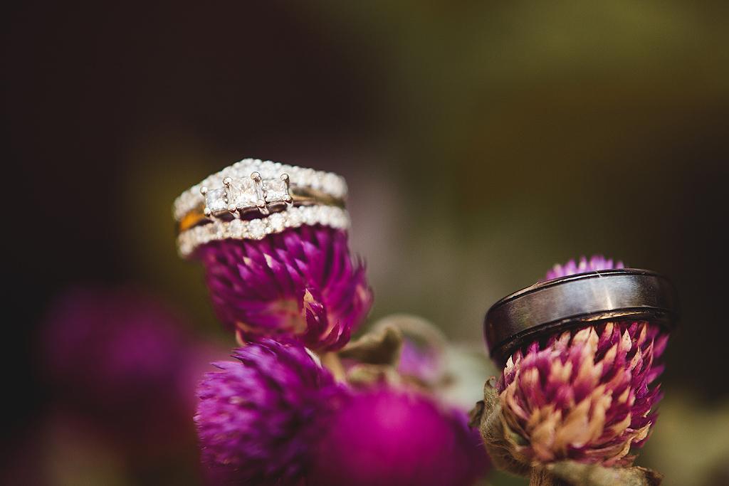 Rings | Quail Haven Farms Wedding