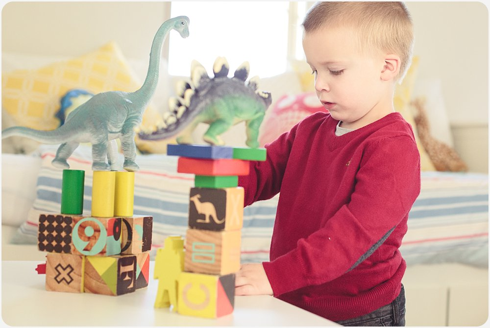 Dinosaur Blocks | San Diego Child Lifestyle Photography