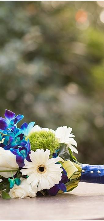 Mills-Winn Wedding | San Diego Wedding Photography