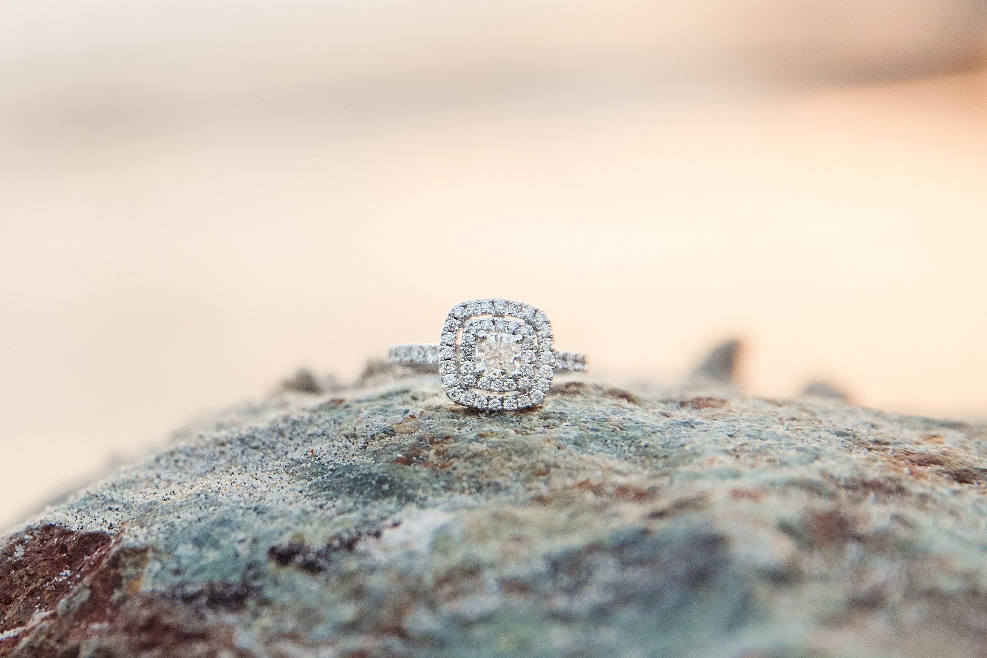 San Diego Proposal Photographer | Ring Shot