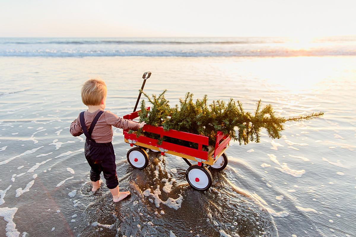 Coronado Beach Christmas Photos